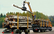 манипулятор лесовоз